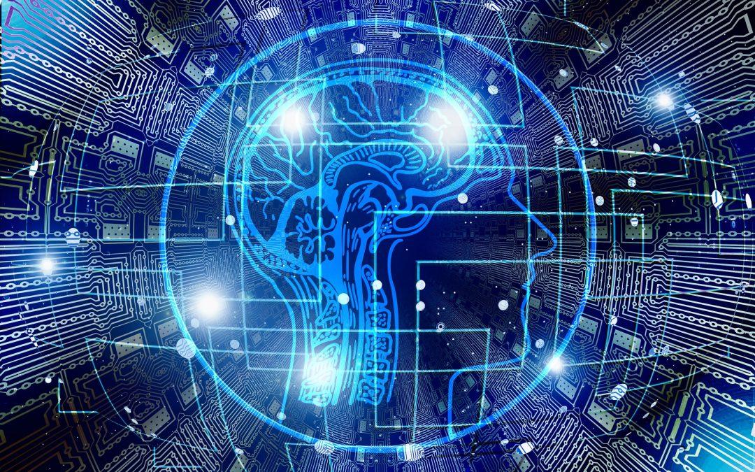 Cervello e Neuroplasticità